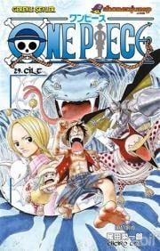 One Piece Cilt: 29