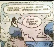 İsmail y